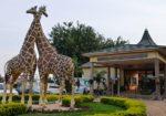 The Uganda Wildlife Education Center