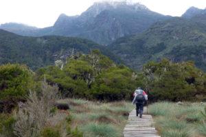 hiking-the-rwenzori-mountains1